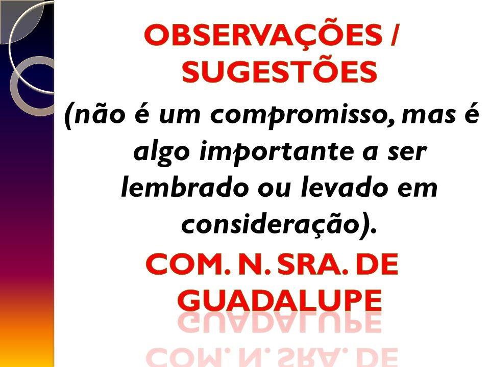 OBSERVAÇÕES / SUGESTÕES