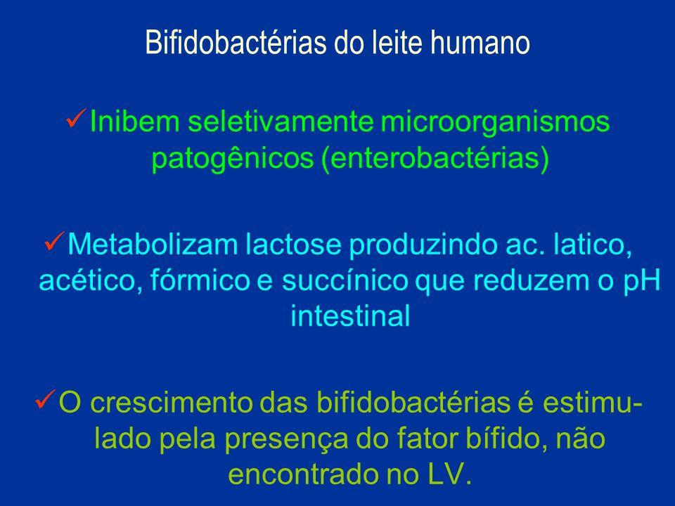 Bifidobactérias do leite humano
