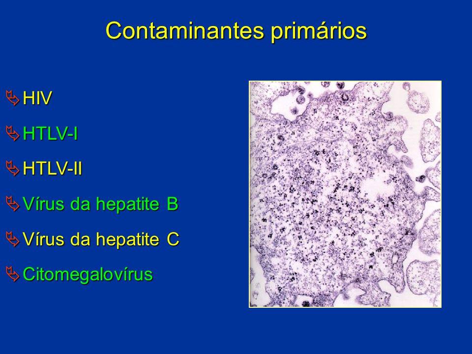 Contaminantes primários