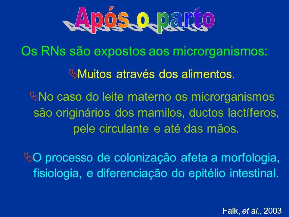 Após o parto Os RNs são expostos aos microrganismos: