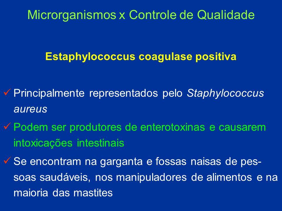 Estaphylococcus coagulase positiva