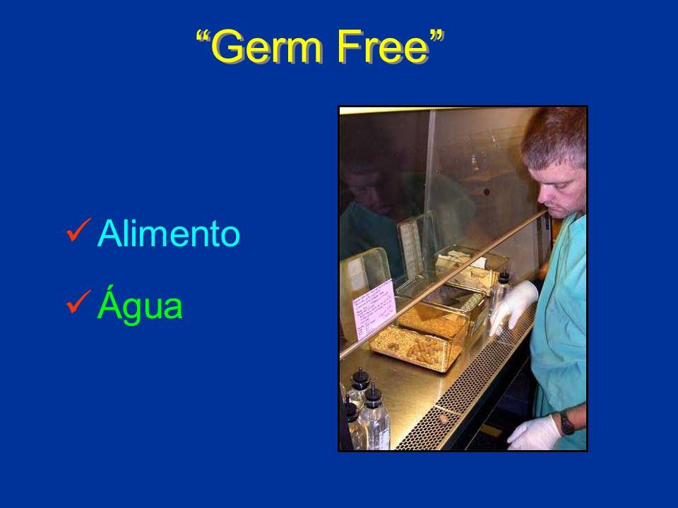 Germ Free Alimento Água