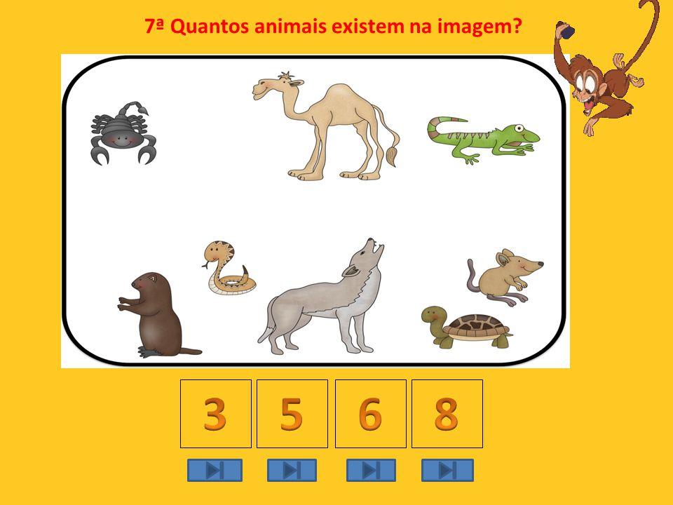 7ª Quantos animais existem na imagem