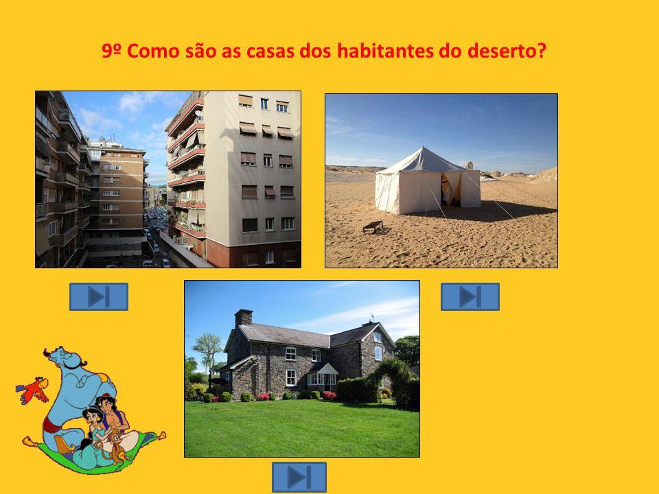 9º Como são as casas dos habitantes do deserto
