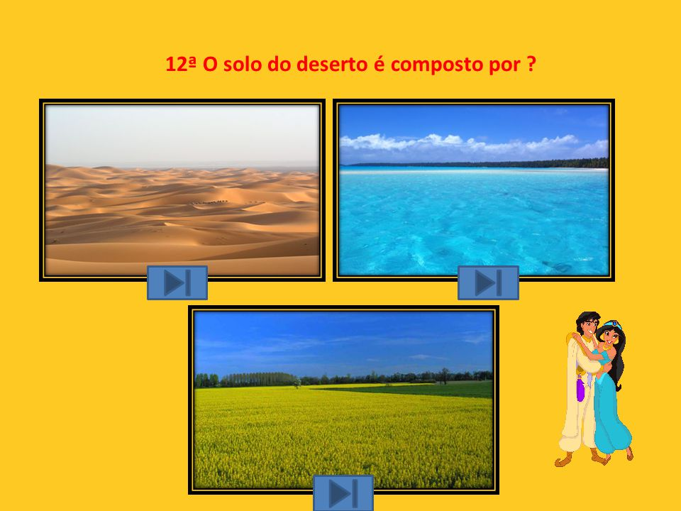 12ª O solo do deserto é composto por