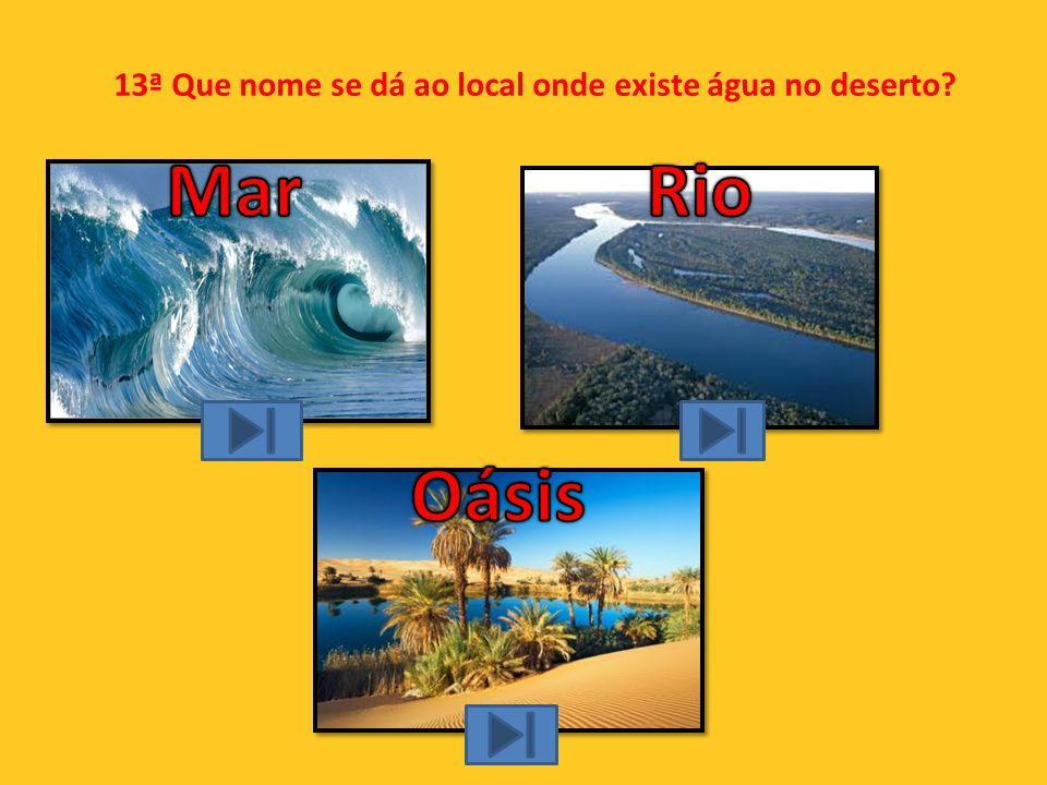 13ª Que nome se dá ao local onde existe água no deserto