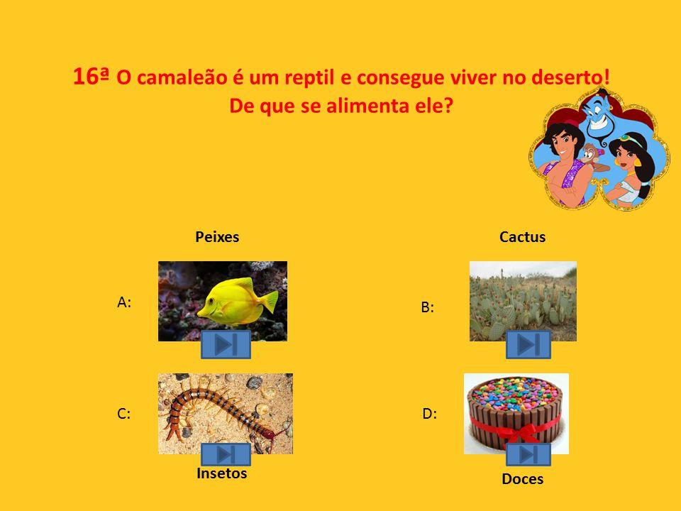 16ª O camaleão é um reptil e consegue viver no deserto