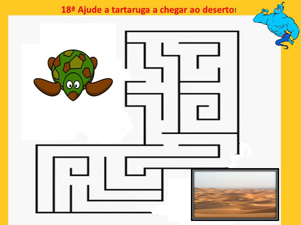 18ª Ajude a tartaruga a chegar ao deserto!