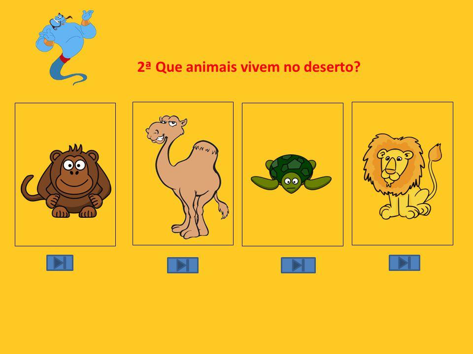 2ª Que animais vivem no deserto