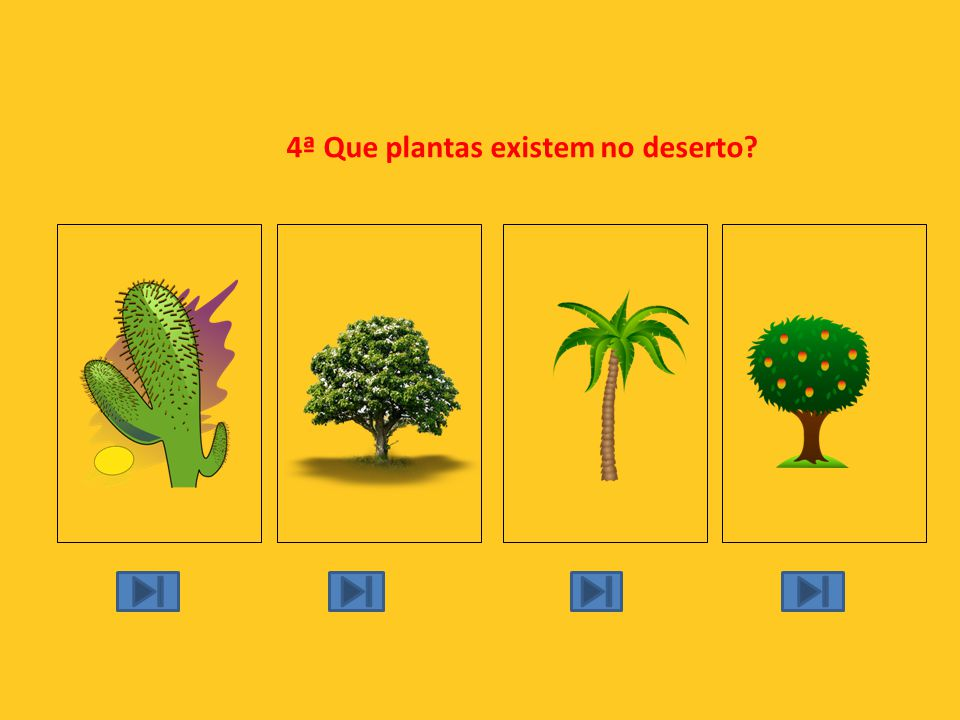 4ª Que plantas existem no deserto