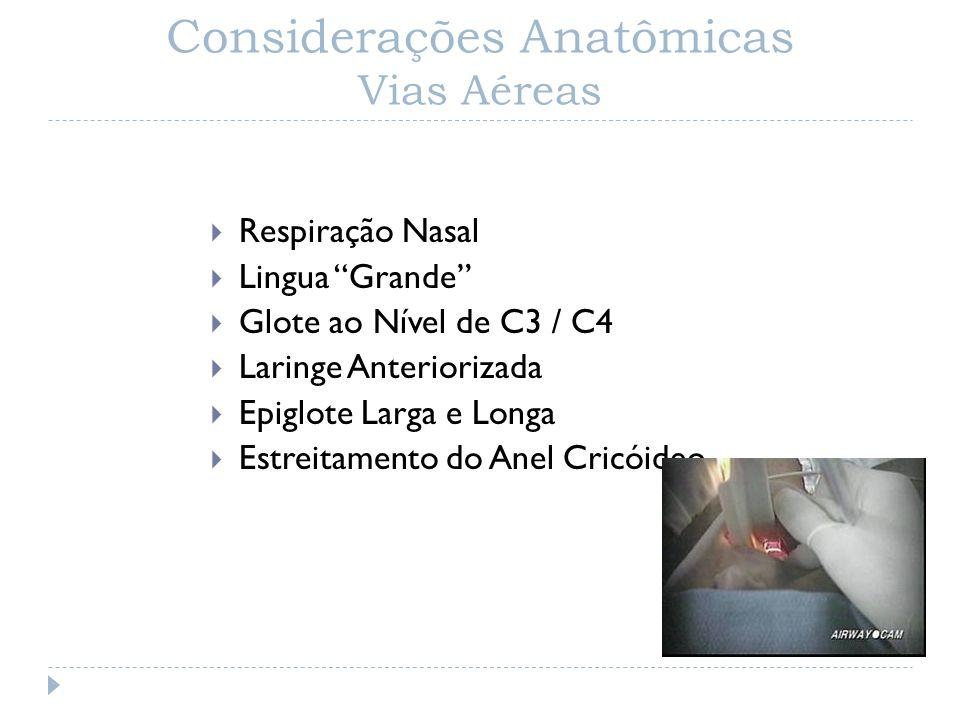 Considerações Anatômicas Vias Aéreas