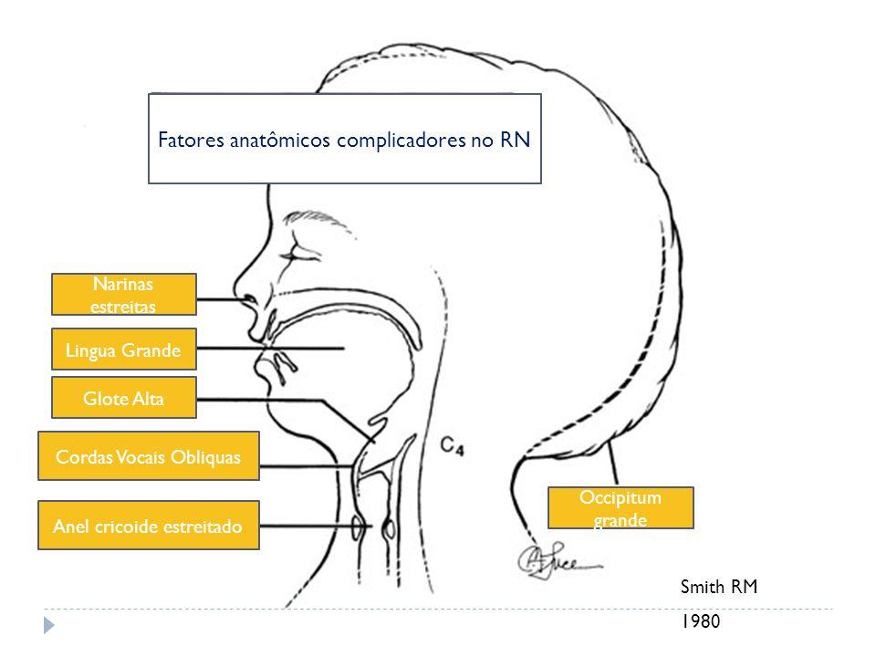 Fatores anatômicos complicadores no RN