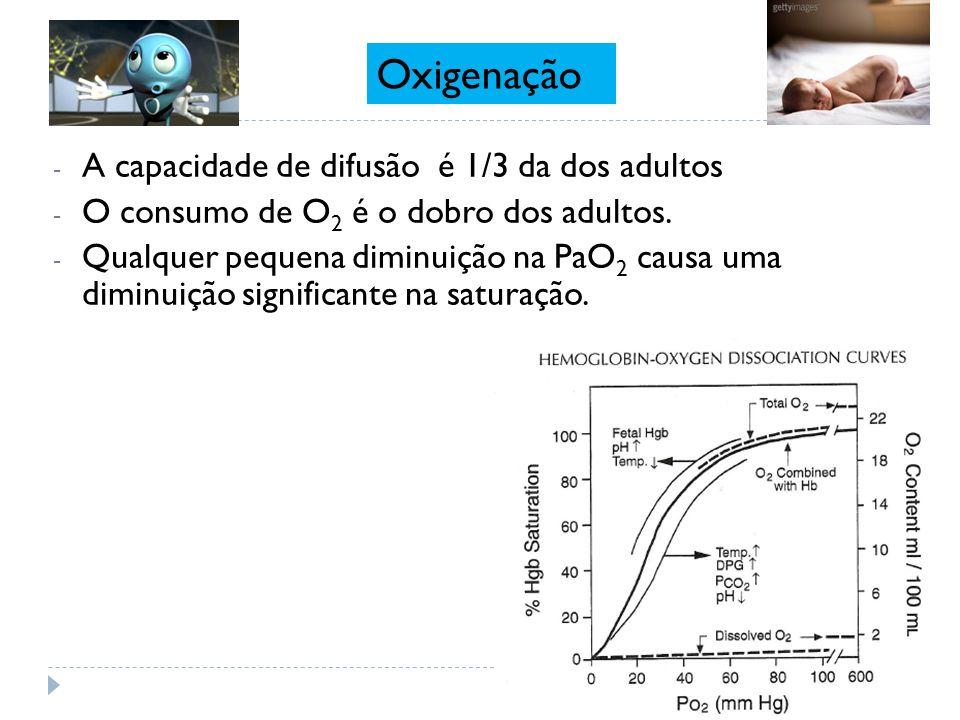 Oxigenação A capacidade de difusão é 1/3 da dos adultos