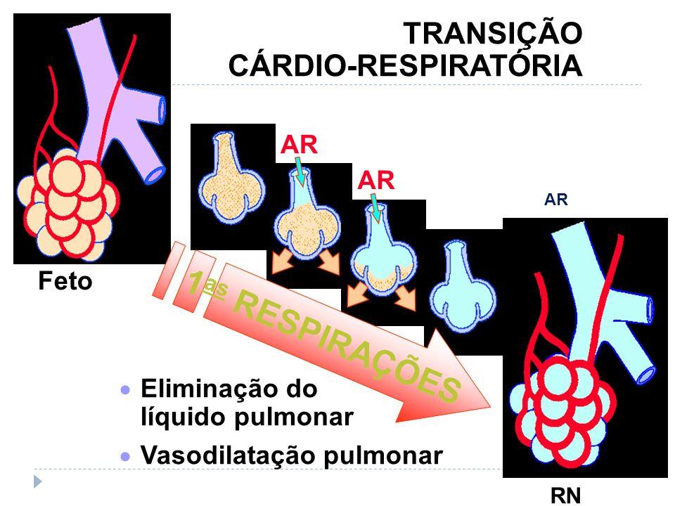 1as RESPIRAÇÕES TRANSIÇÃO CÁRDIO-RESPIRATÓRIA Feto