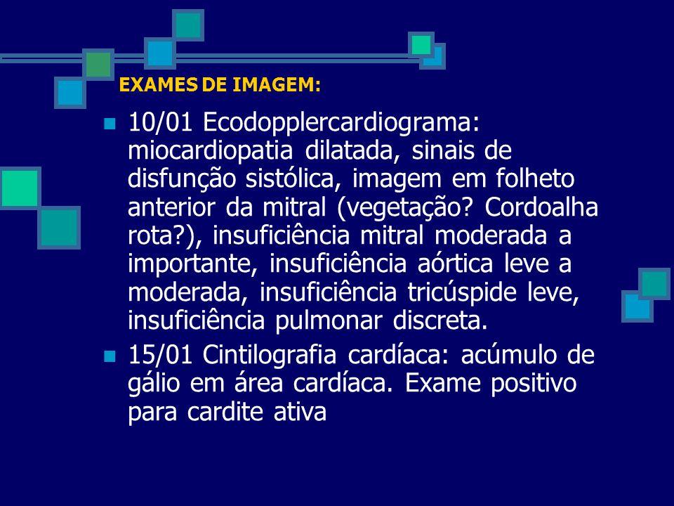 EXAMES DE IMAGEM: