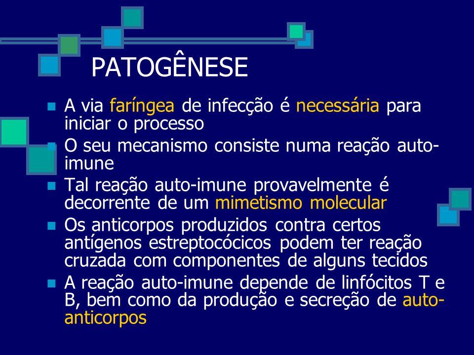 PATOGÊNESE A via faríngea de infecção é necessária para iniciar o processo. O seu mecanismo consiste numa reação auto-imune.