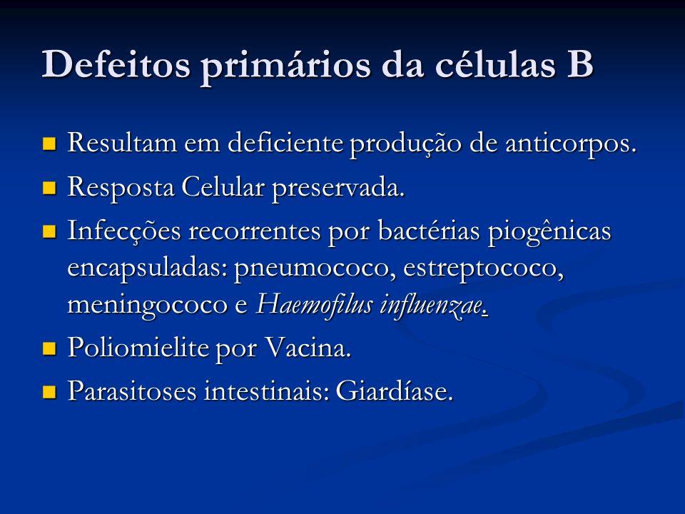 Defeitos primários da células B