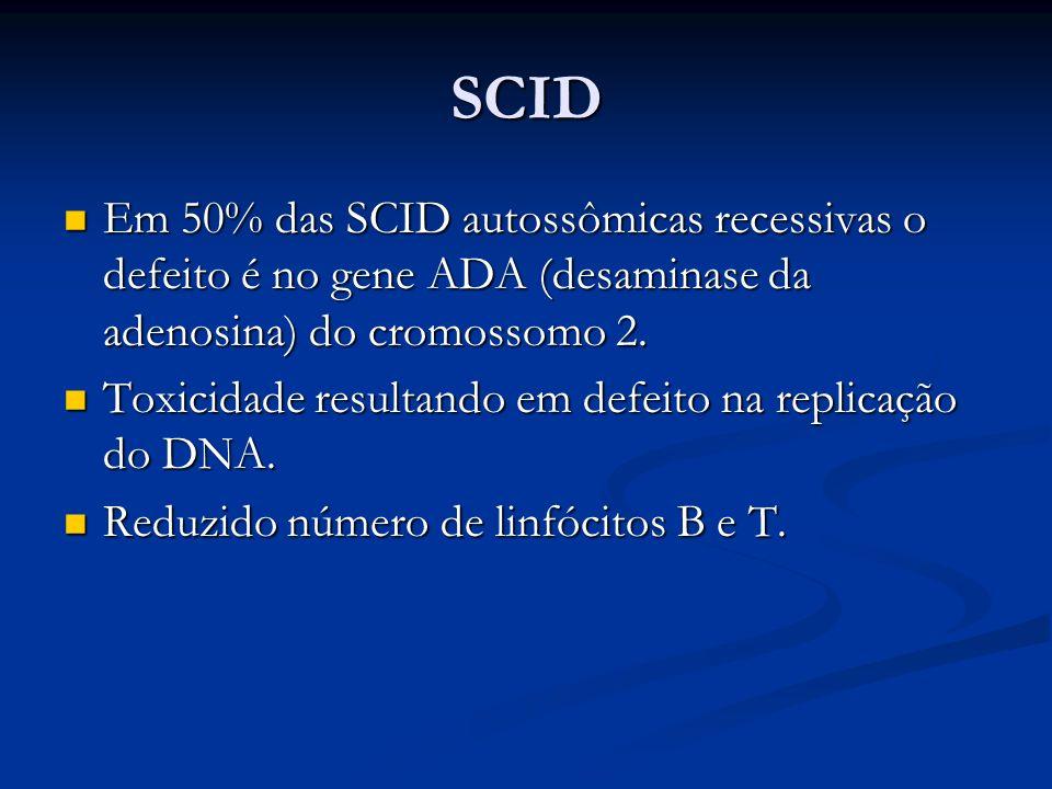 SCIDEm 50% das SCID autossômicas recessivas o defeito é no gene ADA (desaminase da adenosina) do cromossomo 2.
