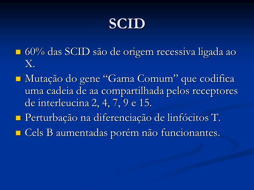 SCID 60% das SCID são de origem recessiva ligada ao X.