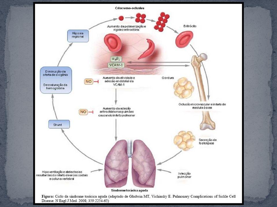 As lesões pulmonares resultam em defeito na