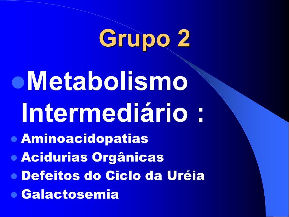 Metabolismo Intermediário :