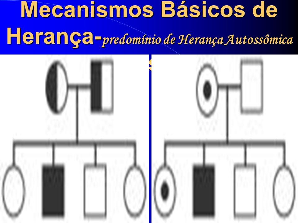 Mecanismos Básicos de Herança-predomínio de Herança Autossômica Recessiva