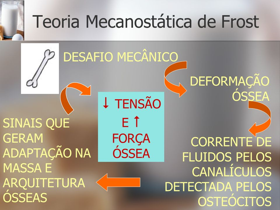 Teoria Mecanostática de Frost