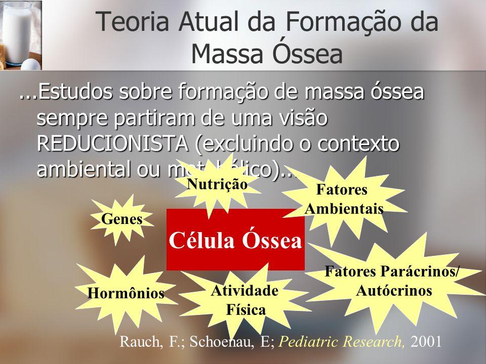 Teoria Atual da Formação da Massa Óssea
