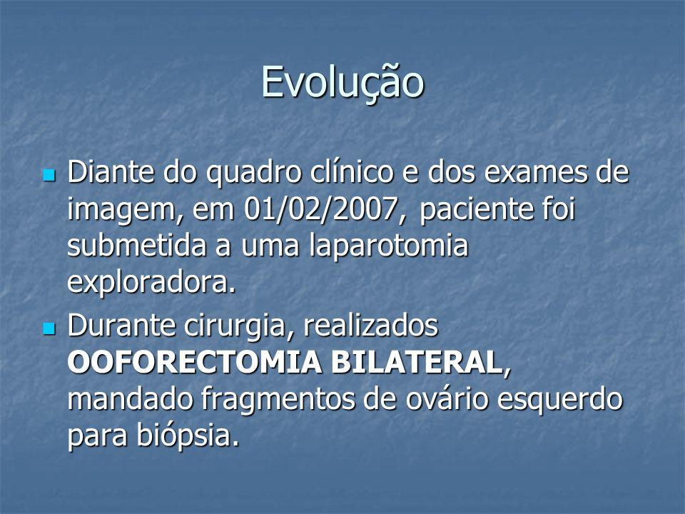 Evolução Diante do quadro clínico e dos exames de imagem, em 01/02/2007, paciente foi submetida a uma laparotomia exploradora.