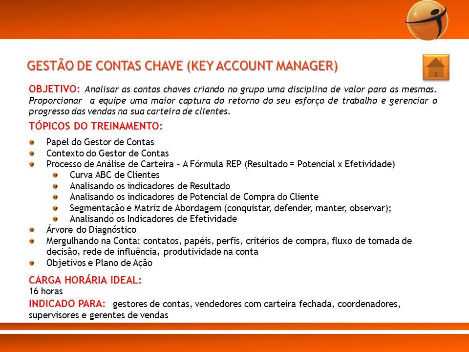 GESTÃO DE CONTAS CHAVE (KEY ACCOUNT MANAGER)