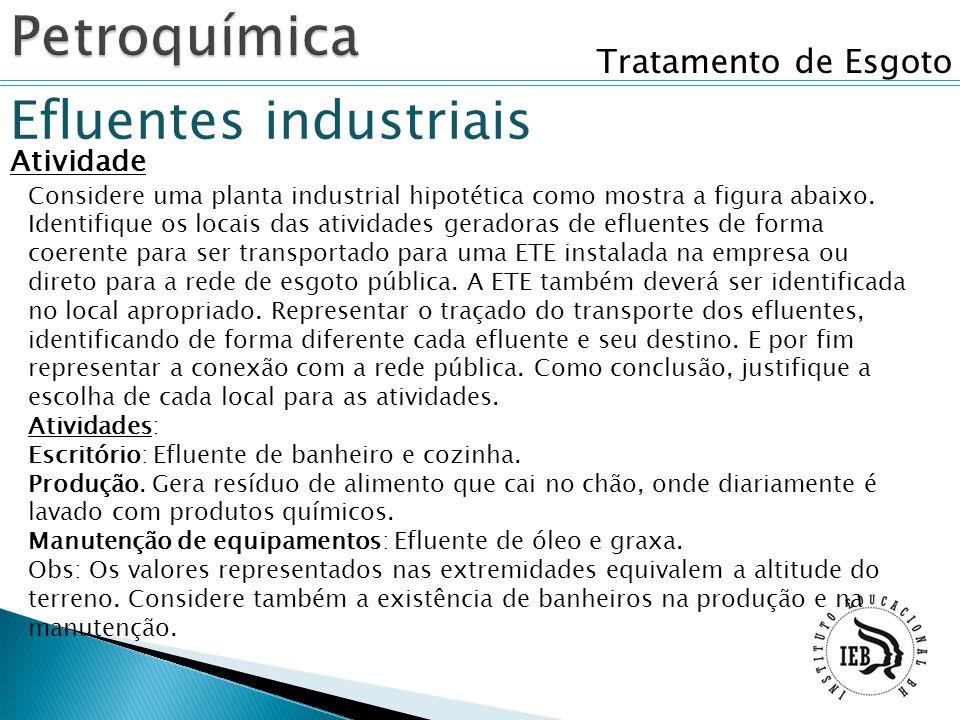 Petroquímica Efluentes industriais Tratamento de Esgoto Atividade