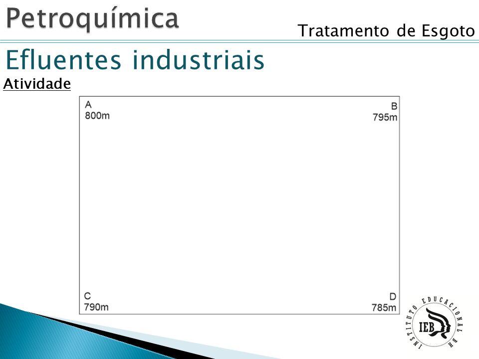 Petroquímica Tratamento de Esgoto Efluentes industriais Atividade