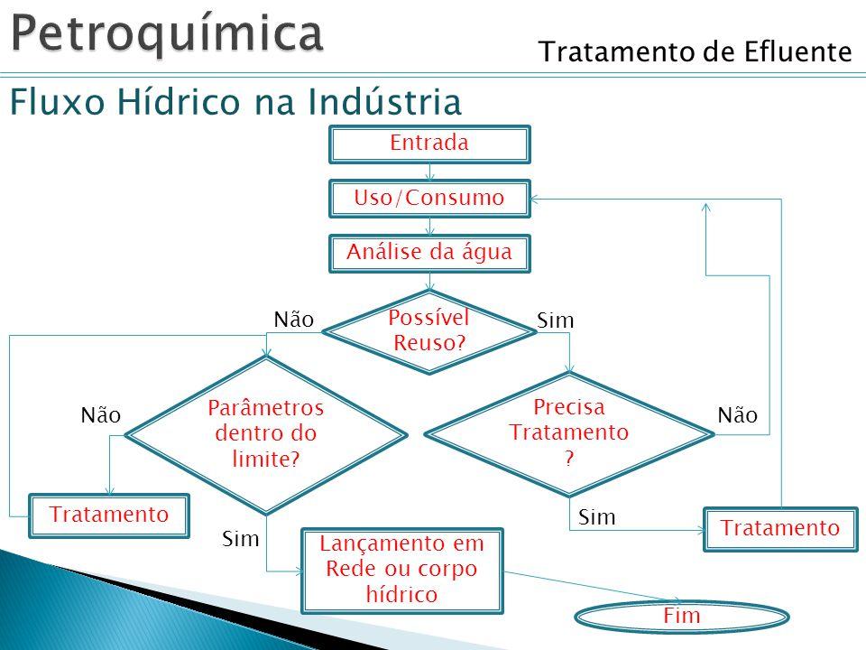 Petroquímica Fluxo Hídrico na Indústria Tratamento de Efluente Entrada