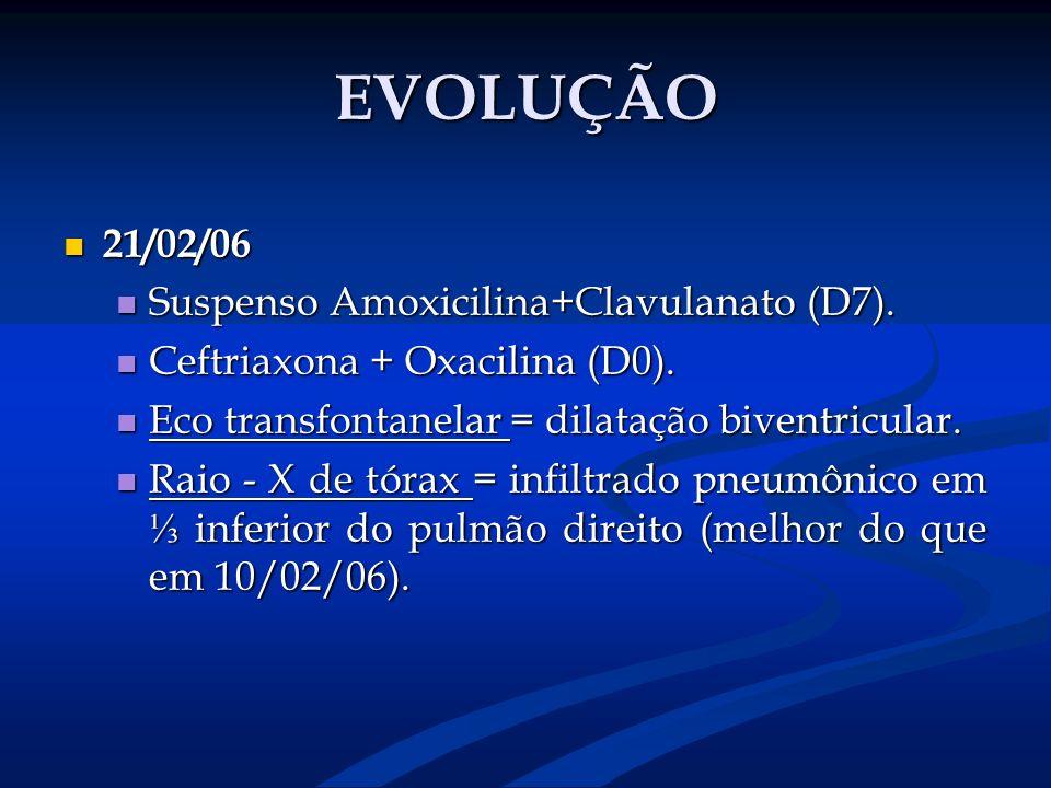 EVOLUÇÃO 21/02/06 Suspenso Amoxicilina+Clavulanato (D7).