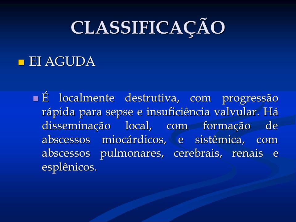CLASSIFICAÇÃO EI AGUDA