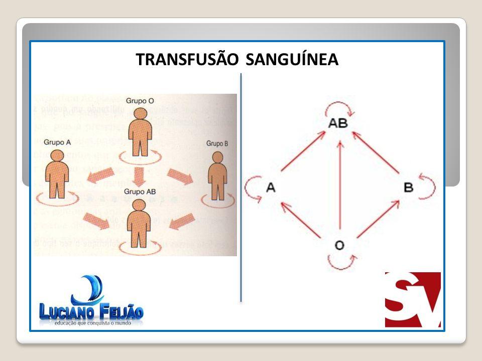 TRANSFUSÃO SANGUÍNEA N° GAMETAS DIFERENTES 2N
