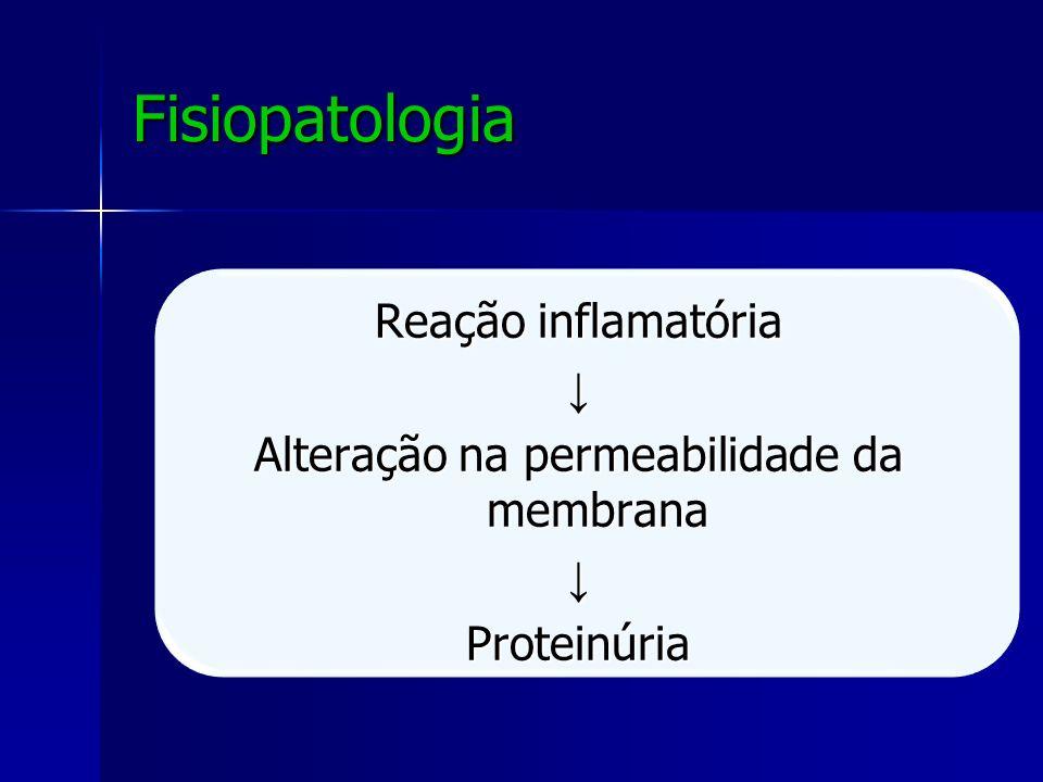 Fisiopatologia Reação inflamatória ↓ Alteração na permeabilidade da membrana Proteinúria