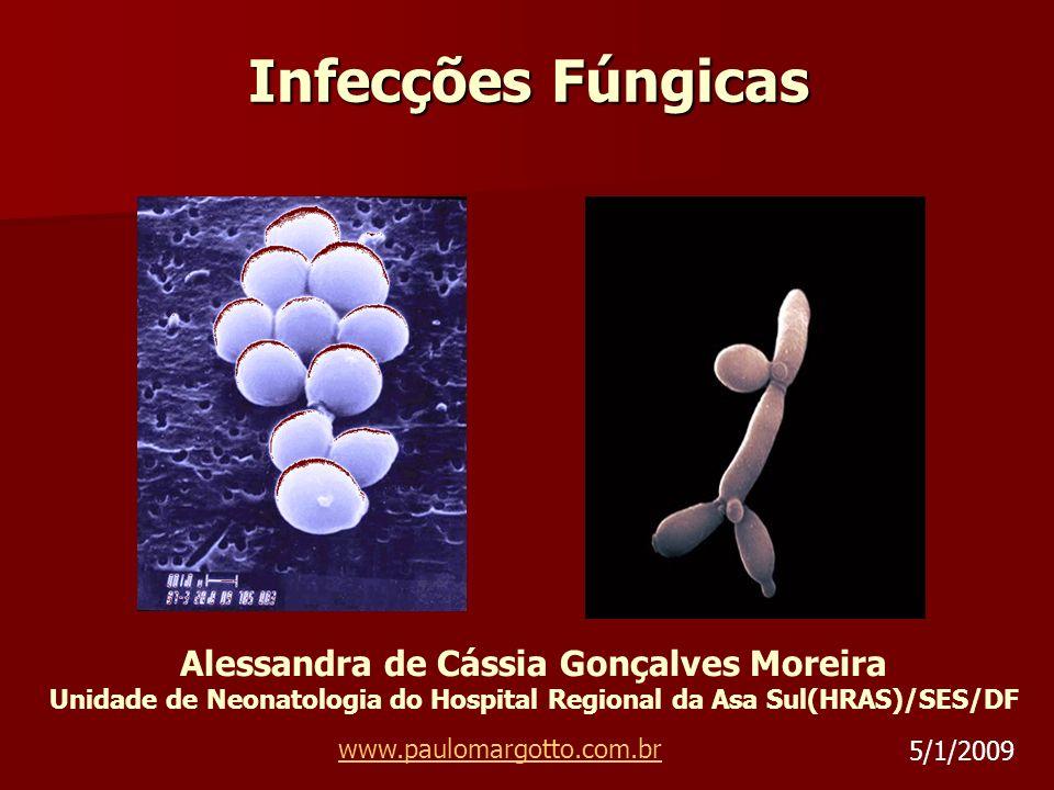 Infecções Fúngicas Alessandra de Cássia Gonçalves Moreira