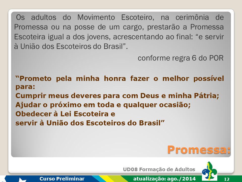 Os adultos do Movimento Escoteiro, na cerimônia de Promessa ou na posse de um cargo, prestarão a Promessa Escoteira igual a dos jovens, acrescentando ao final: e servir à União dos Escoteiros do Brasil .