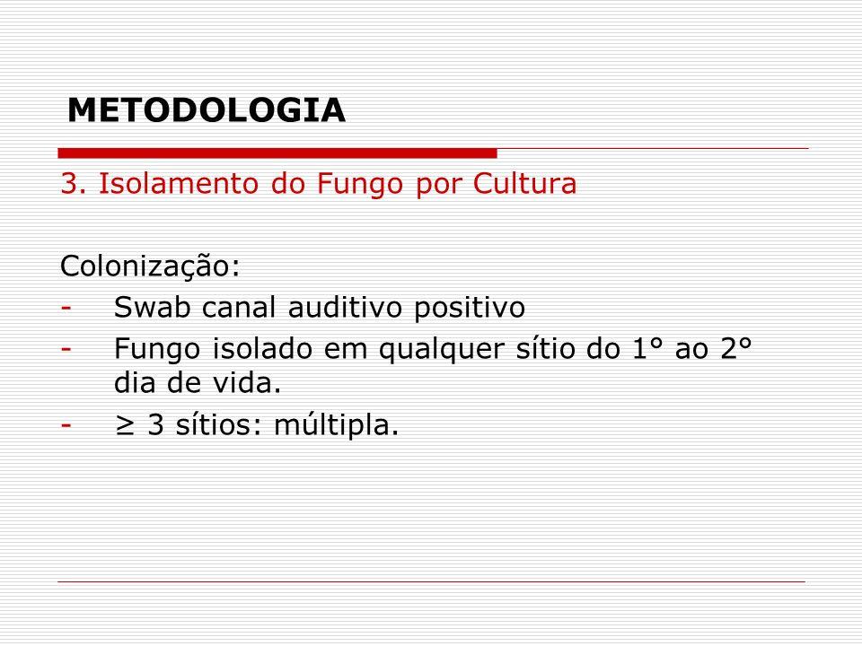 METODOLOGIA 3. Isolamento do Fungo por Cultura Colonização: