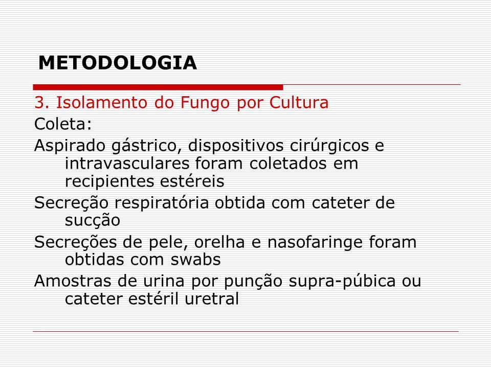 METODOLOGIA 3. Isolamento do Fungo por Cultura Coleta: