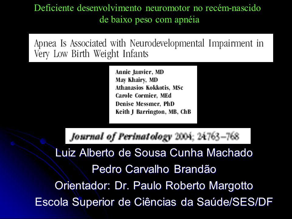 Luiz Alberto de Sousa Cunha Machado Pedro Carvalho Brandão