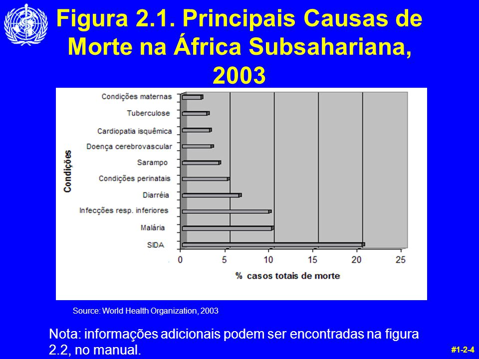 Figura 2.1. Principais Causas de Morte na África Subsahariana, 2003