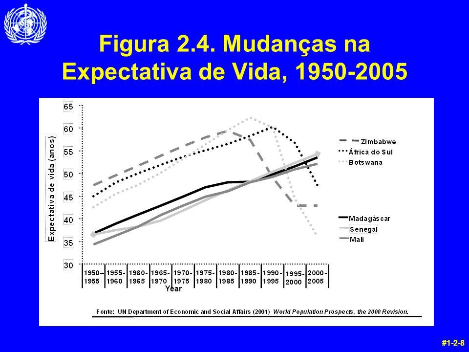 Figura 2.4. Mudanças na Expectativa de Vida, 1950-2005