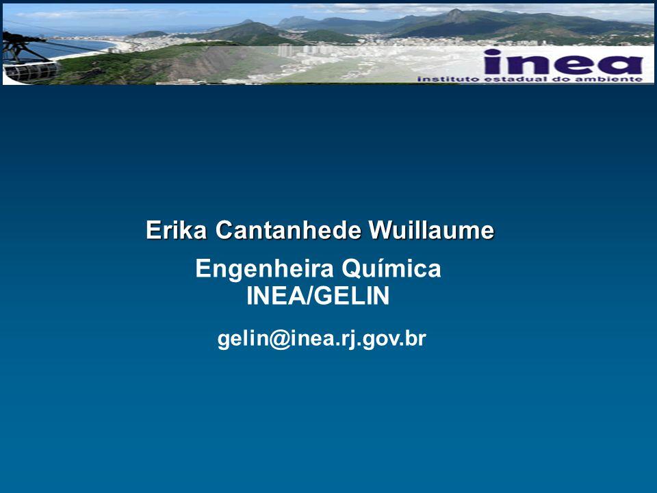 Engenheira Química INEA/GELIN