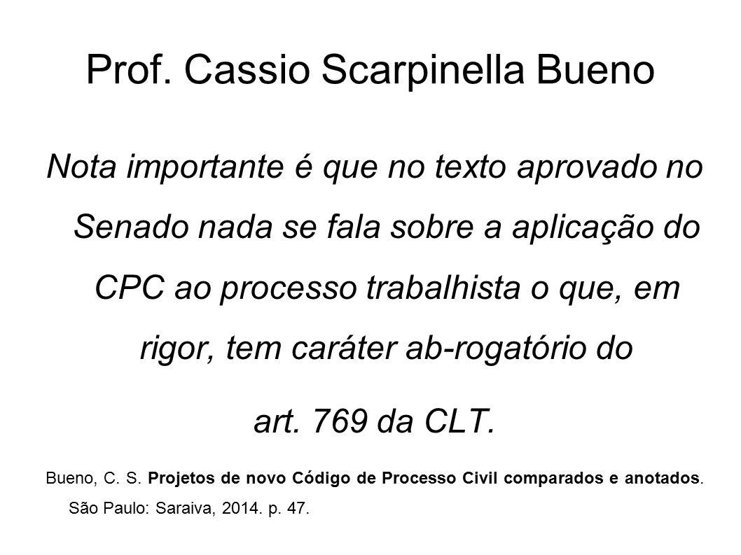Prof. Cassio Scarpinella Bueno