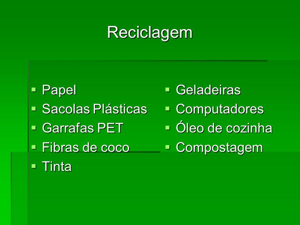 Reciclagem Papel Sacolas Plásticas Garrafas PET Fibras de coco Tinta