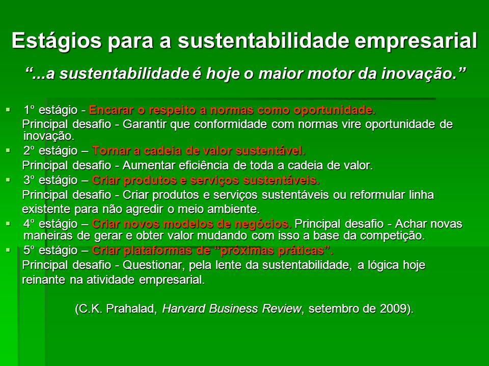 Estágios para a sustentabilidade empresarial