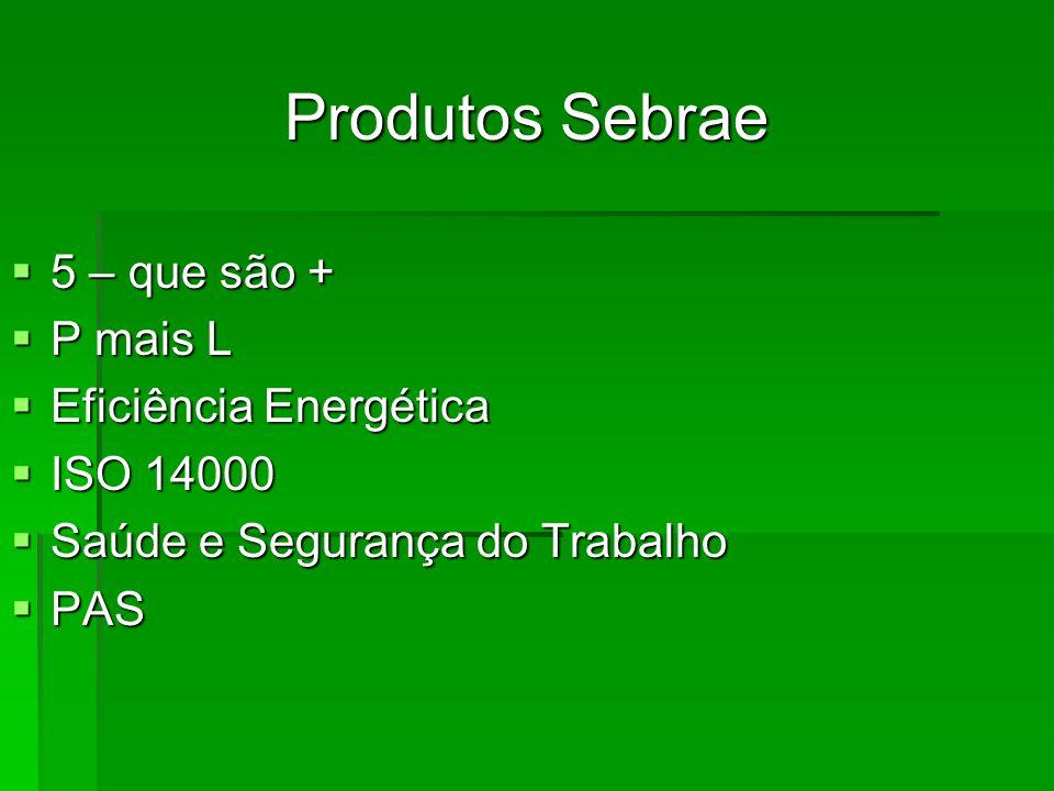 Produtos Sebrae 5 – que são + P mais L Eficiência Energética ISO 14000