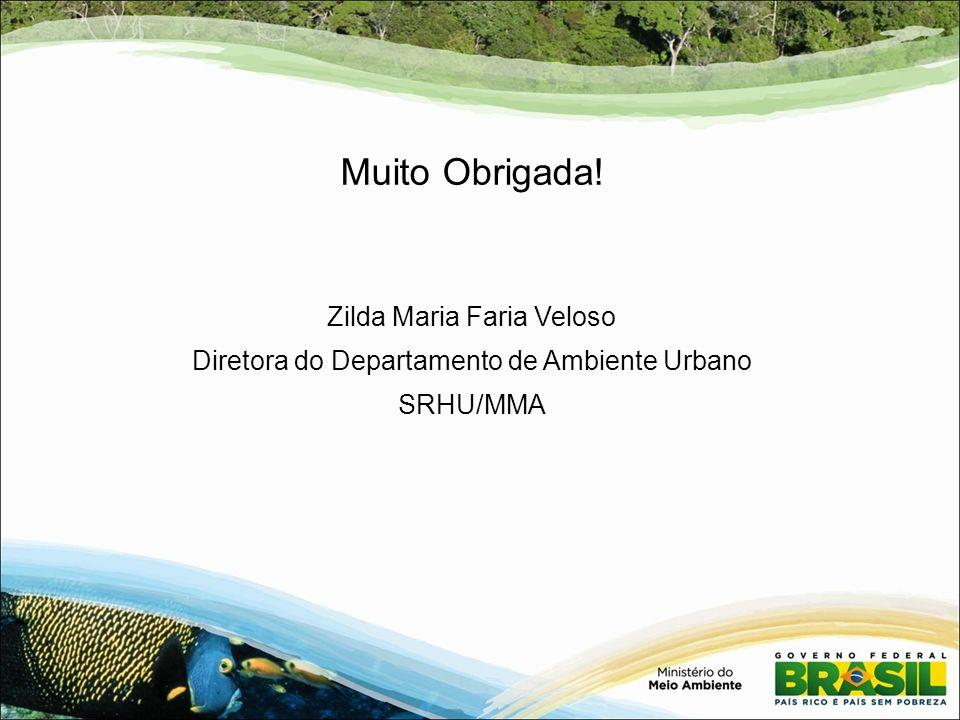 Muito Obrigada! Zilda Maria Faria Veloso